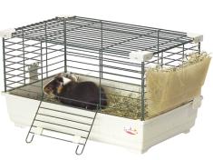 guinea_pig_cage